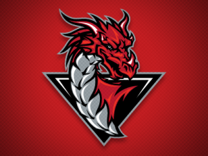 logo-dragons-nj.png